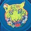 check tiger